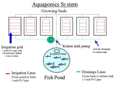 aquasystem468x350